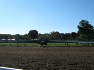 American Pharoah's morning workout day before Travers' Stakes