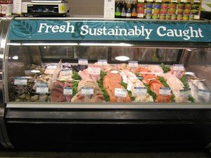 Fish counter at Honest Weight Food Co-op in Albany, New York