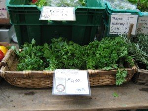 Fresh curly parsley from NOFA-NY certified organic Slack Hollow Farm