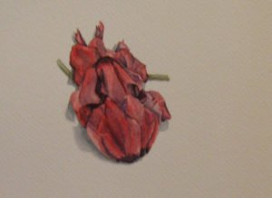 Allison Borek's watercolor on paper