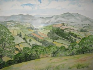 Drayton Darcy's wonderful watercolors adorn the walls of the café including a landscape of farm fields in Herefordshire, England