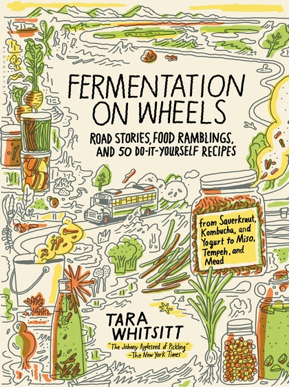 B.U. Undergrads Demonstrate Potential Superiority of Fermented Foods Over Probiotic Pills