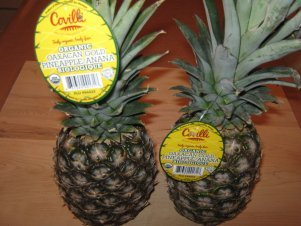 Pineapples Growing In Providence, R.I., An Unlikely Reminder That 99.9% Grown In Other Countries