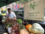 Food Tank's Summit in NYC Questions Why 1/3rd Of The Global Harvest Never Reaches Peoples' Stomachs