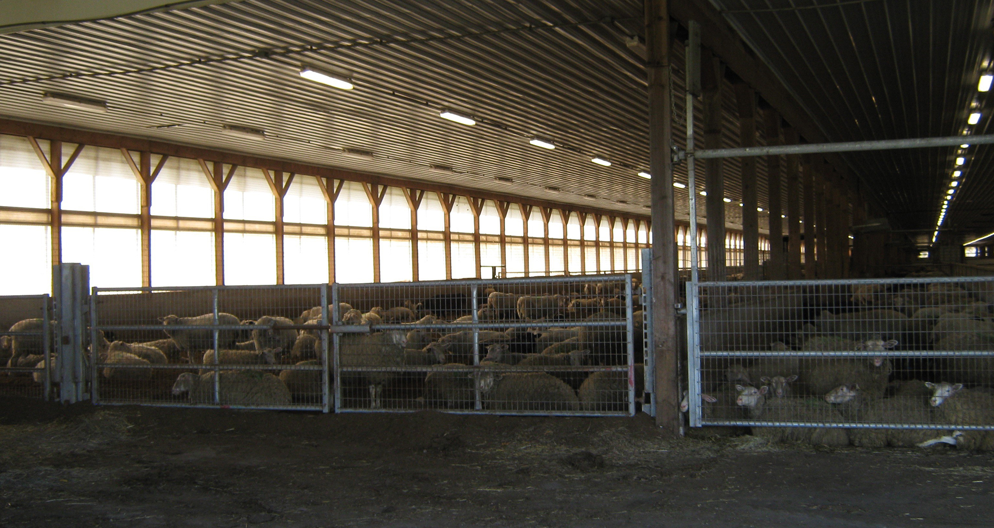 Scaling Up Means Closing Down Farmstead Creamery's Pastoral