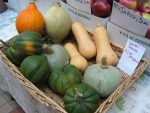 Sourcing Healthy Foods In Winter At Year Round Farmers Market In Frigid Upstate NY