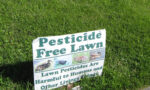 "Persuasive Position of ""Beyond Pesticides"": Perceive Green Lawns Untreated With Chemical Pesticides As Ecological"