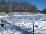 Livelihood From Farming One Acre On Edge Of Small Upstate NY City
