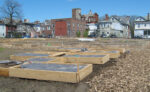 Growing Food In A Community Garden Offers Hope, Community & Good Food Especially Post-Pandemic